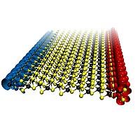 MoS2 nanoribbon